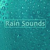 Rain Sounds by Sleep Sound Library