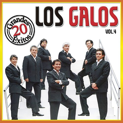 20 Grandes Exitos - Vol. 4 de Los Galos