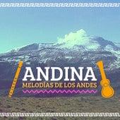 Andina (Melodías de los Andes) de Various Artists