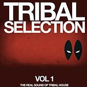 Tribal Selection, Vol. 1 (The Real Sound of Tribal House) by Various Artists