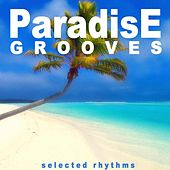 Play & Download Paradise Grooves (Selected Rhythms) by Various Artists | Napster