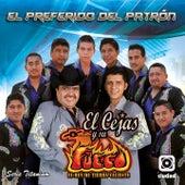 El Preferido del Patrón (El Rey de Tierra Caliente) by El Cejas Y Su Banda Fuego