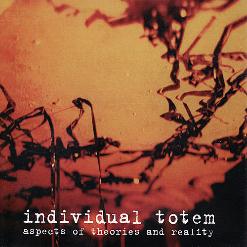 Play & Download Aspects Of Theories And Reality by Individual Totem | Napster