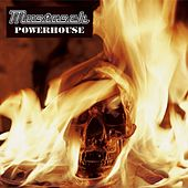 Powerhouse by Mustasch