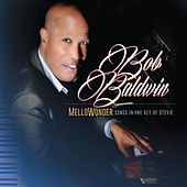 Mellowonder/Songs in the Key of Stevie by Bob Baldwin