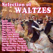 Play & Download Selection Of Waltzes by Various Artists | Napster