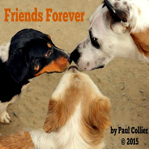 Play & Download Friends Forever by Paul Collier | Napster