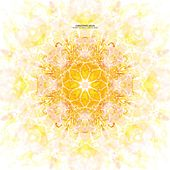 Tiger Flower Circle Sun by Christopher Willits