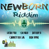 Play & Download Newborn Riddim by Various Artists | Napster