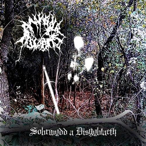 Play & Download Sobrwydd a Disgyblaeth by Ankou Awaits | Napster