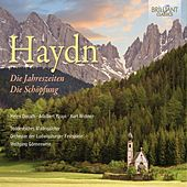 Play & Download Haydn: Die Jahreszeiten, die Schopfung by Various Artists | Napster