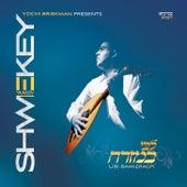 Libi Bamizrach by Yaakov Shwekey