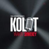Kolot by Yaakov Shwekey