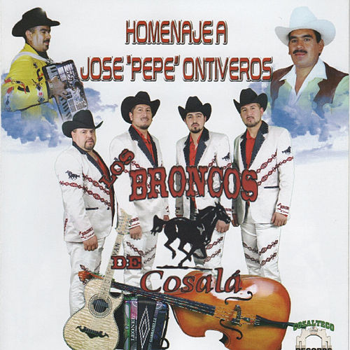 Play & Download Homenaje a Jose Pepe Ontiveros by Los Broncos De Cosala | Napster