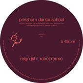 Play & Download Reign (Shit Robot Remix) by Prinzhorn Dance School | Napster