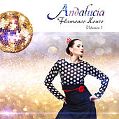 Play & Download Andalucía Flamenco House, Vol. 1 by Various Artists | Napster