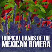 Play & Download Tropical Bands Of The Mexican Riviera: La Margarita, La Flor, Tu Regalito, Preciosa y Mas by Various Artists | Napster