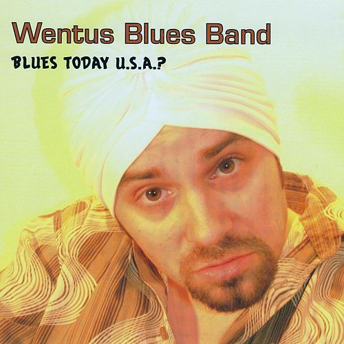 Play & Download Blues Today U.S.A. by Wentus Blues Band | Napster