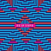 Dig up Stupid by Stag