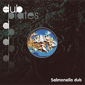 Inside the Dubplates by Salmonella Dub