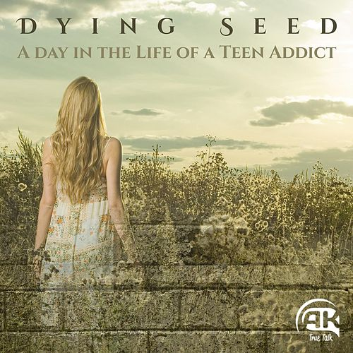 A Day in the Life of a Teen Addict by Dying Seed