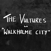 Play & Download Walkholme City by the Vultures | Napster