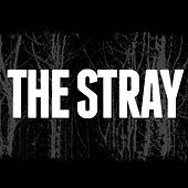 Play & Download The Stray EP by Stray | Napster