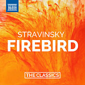 Play & Download Stravinsky: The Firebird by Various Artists | Napster