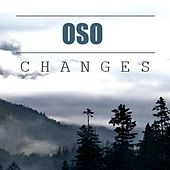 Changes by Oso