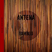 Play & Download Bamboo by Antena | Napster