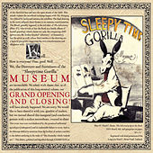 Play & Download Grand Opening And Closing by Sleepytime Gorilla Museum | Napster