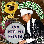 Play & Download Esa Fue MI Novia by Saul Viera el Gavilancillo | Napster
