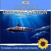 Play & Download Deep Relaxation Music, for meditation, a better sleep or just for dreaming by Largo | Napster