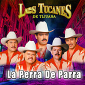 Play & Download La Perra De Parra by Los Tucanes de Tijuana | Napster