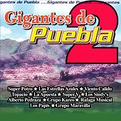 Gigantes de Puebla 2 by Various Artists