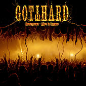 Homegrown - Alive In Lugano (Bonus Version) by Gotthard