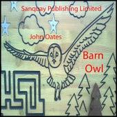 Barn Owl by John Joseph Oates