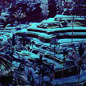 Paradise Simulator by Dust