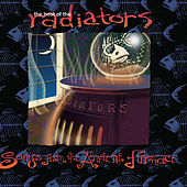 Play & Download The Best of the Radiators: Songs from the Ancient Furnace by The Radiators | Napster
