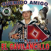Play & Download 20 Exitos Del Querido Amigo by Saul Viera el Gavilancillo | Napster