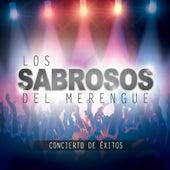 Concierto De Éxitos by Los Sabrosos Del Merengue