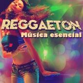 Play & Download Reggaeton: Música Esencial, Incluye Música de J Alvarez, Los Teke Teke, Falo, Y Muchos Más... by Various Artists | Napster