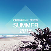 Summer 2015 by Various Artists