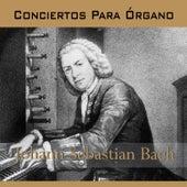 Bach, Conciertos para Órgano by Radio-Symphonie-Orchester Berlin
