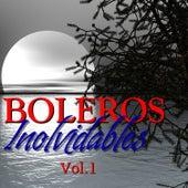 Boleros Inolvidables Vol.1 by Various Artists