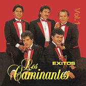 Play & Download 21 Exitos Vol. 1 by Los Caminantes | Napster