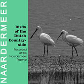 Play & Download Birds of the Dutch Countryside by The Birds | Napster