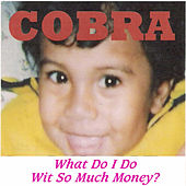 Play & Download What Do I Do Wit so Much Money ? by Cobra | Napster