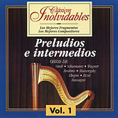 Clásicos Inolvidables Vol. 1, Preludios e Intermedios by Various Artists