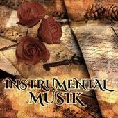 Instrumentalmusik - Entspannungsmusik Klavier, Schöne Harfenmusik, Wohlbefinden, Beruhigende Klänge by Various Artists